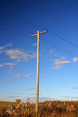 telephonepole_1410.jpg