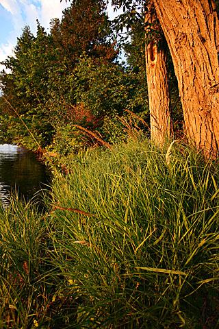 lakeside_8947.jpg